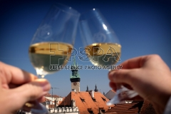 A low angle view through a wine glass at Znojmo