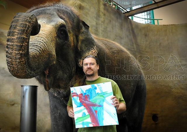 Ústečtí sloni malují obrazy